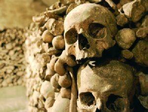 Lyon souterrain et ses squelettes dans les arêtes de poisson