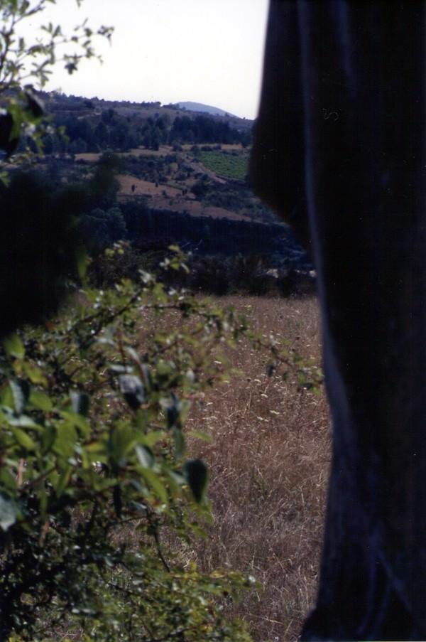 On voit émerger le sommet du Cardou à l'horizon à partir du Christ d'Antugnac