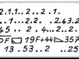 Cryptogramme de l'aiguille creuse