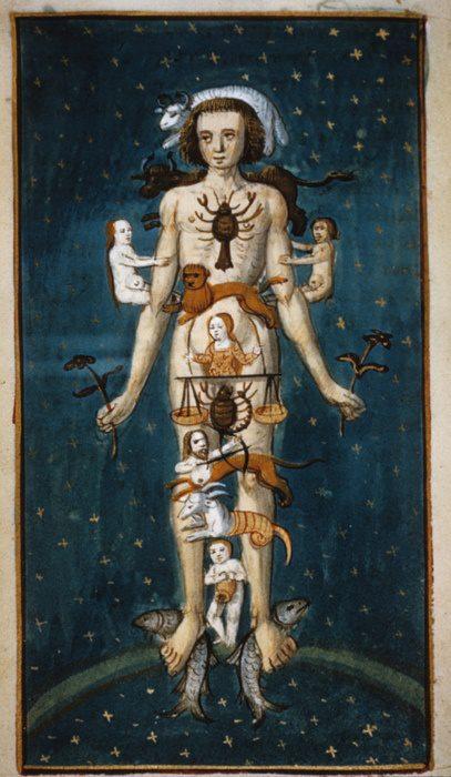 La voute étoilée par ses constellations se retrouve dans le corps de l'homme
